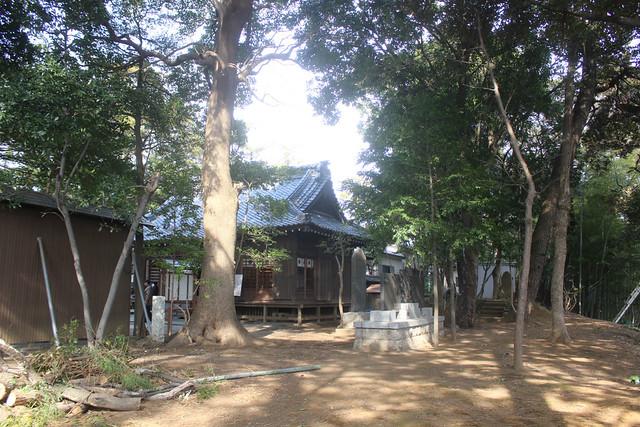 narashinoohara-gosyuin02036