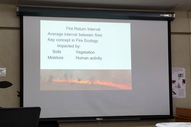 classroom with a screen showing a picture of a prescribed burn and information about fire return intervals