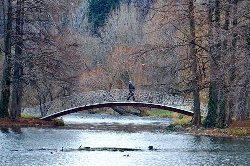 tineretului bucharest românia landscape bridge sector4 alpha5000 sony winter iarnă bucurești