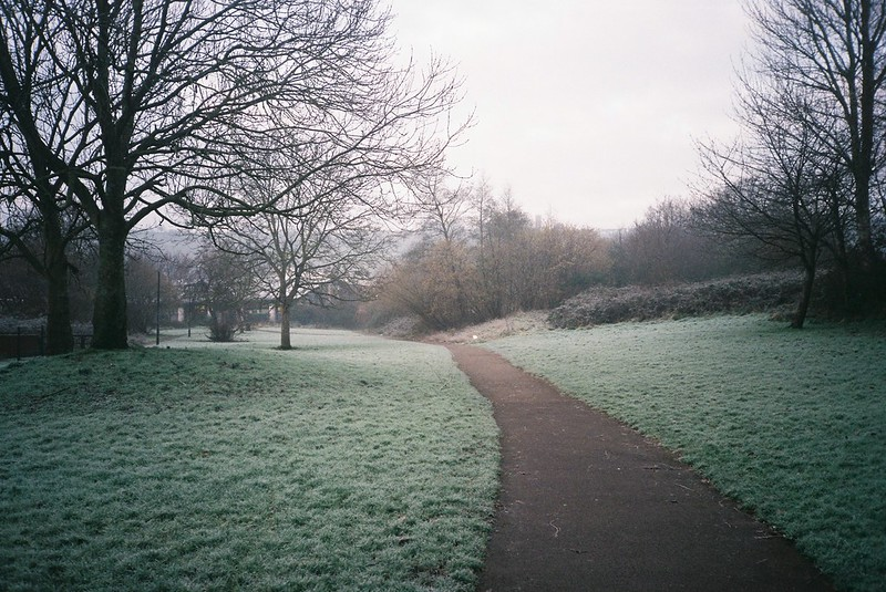 The line of the Malago, Withywood Park