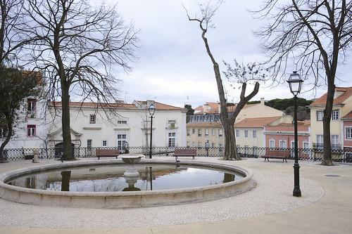 Winter garden #street #lisbon #t3mujinpack