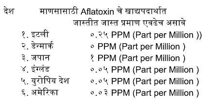 माणसासाठी Aflatoxin चे खाद्यपदार्थात