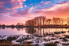 Burgundy Sunset