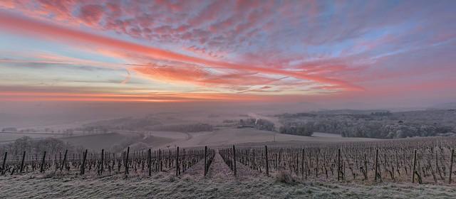 *Wittlicher Senke @ Wintermorgen-Panorama*