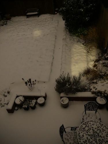 Snowy Garden View