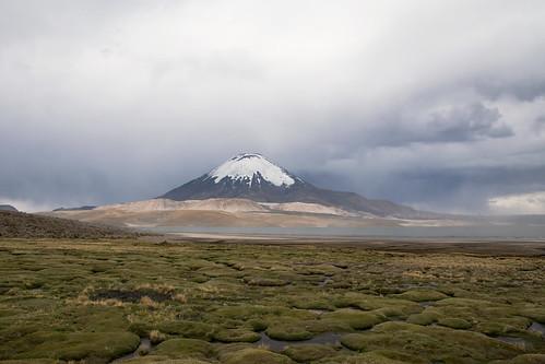 lago chungará parinacota volcano lake chile lauca national parl parque nacional