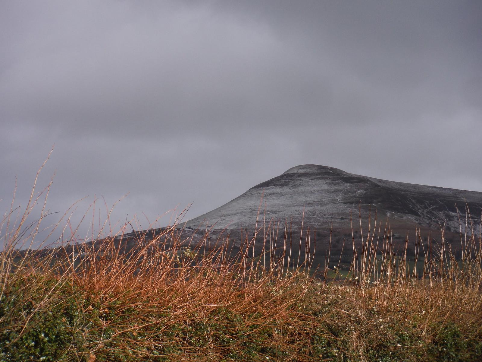 Mynydd Troed from road down to Llangors SWC Walk 308 - Bwlch Circular (via Mynydd Troed and Llangorse Lake)