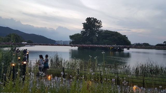 Living in Korea Suseong Lake