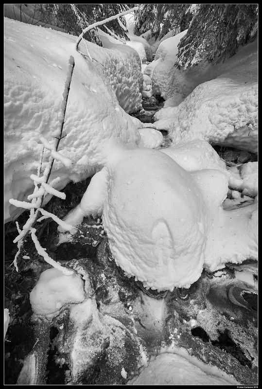 Snowy Brook #2