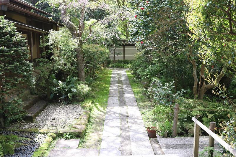 20170415_鎌倉アルプス_0401.jpg