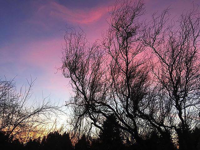 The sunset tonight. 😍