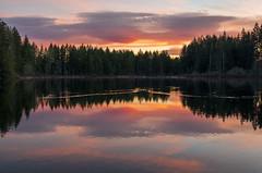 Yellow Lake Sunrise
