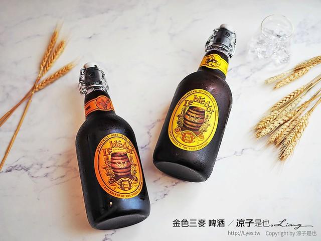 金色三麥 啤酒 8
