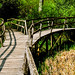 Royal Botanical Gardens at Wakehurst Place, West Sussex  王立植物園のウェイクハースト・プレイス、イギリス