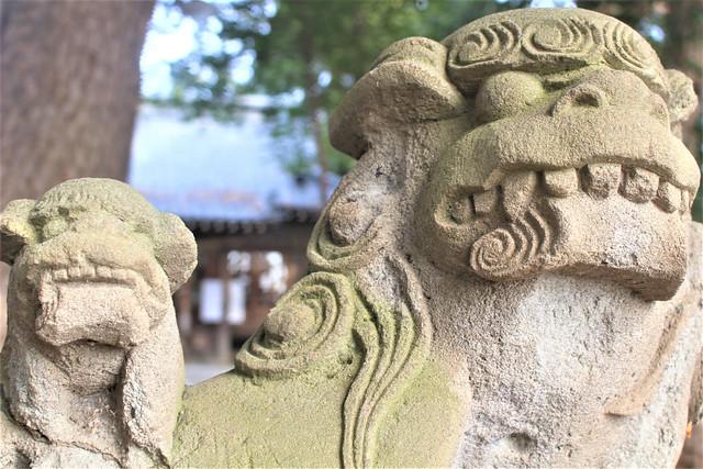 narashinoohara-gosyuin02006