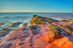 -15C Dennis Beach, New Brunswick