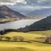 Bassenthwaite Lake from Lothwaite