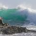 A wave at Kilcunda, Victoria, Australia.