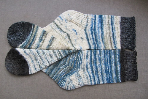 sock 31