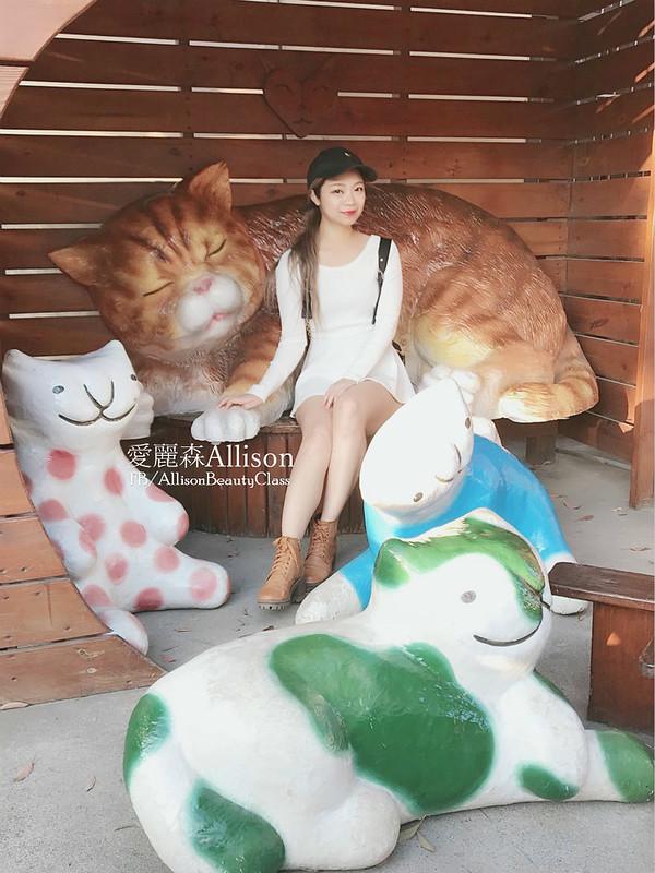 雲林屋頂上的貓|彩繪村貓咪小學堂|雲林景點