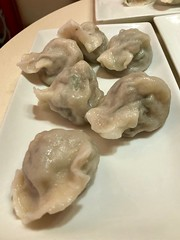 NYC - Flushing: Dumpling Galaxy