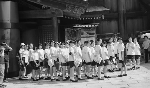 CF C7 30 032 島根県出雲大社 Leica MP × D.Summicron 50mm F2#