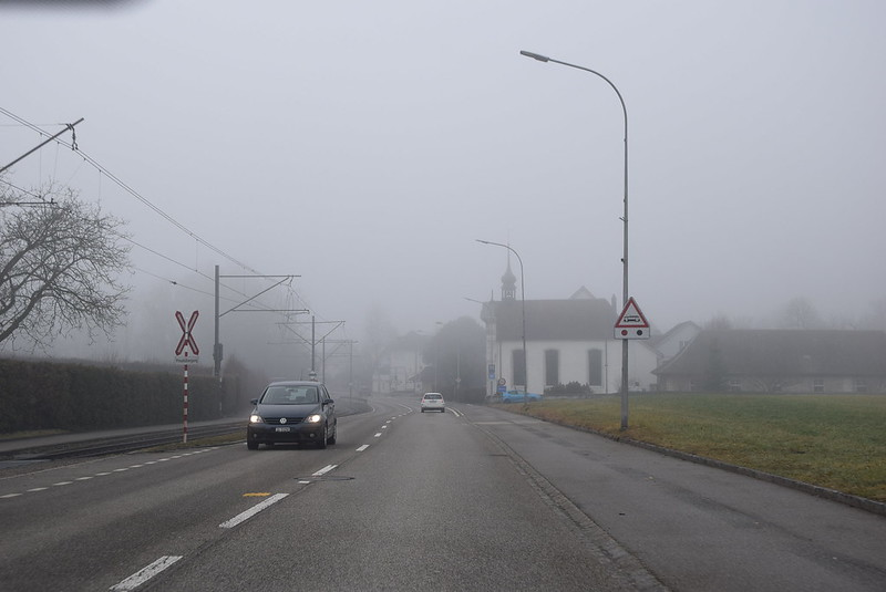 Road to Langendorf in the mist  (5)
