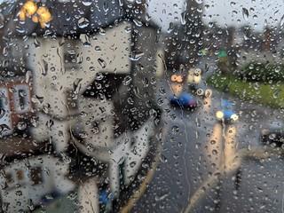 Rainy Dorking