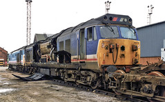 Condemned Class 50's