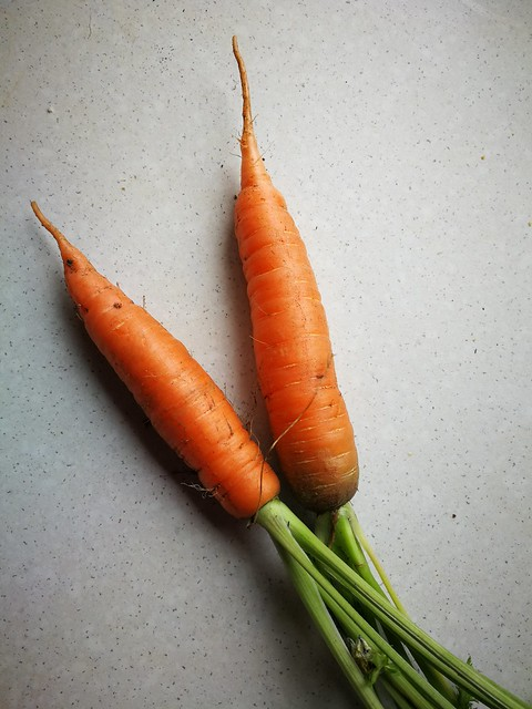 2 individual carrots