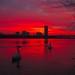 Into Sunrise by robertglaser75