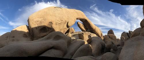 Joshua Tree - Arch Rock panorama