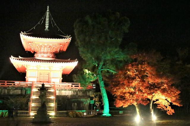 daikakuji-gosyuin039