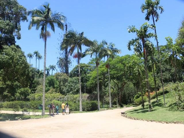 jardim botanico 2 atractii turistice rio de janeiro