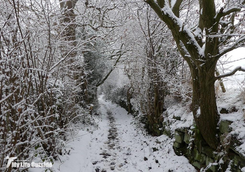 P1130193 - December Snow in Leeds