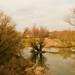 Jan 09: Winter Flooding on Morava River 4 by Johan Pipet 2M+ views