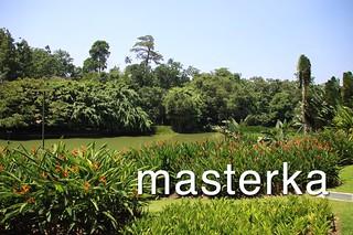 _シンガポール植物園