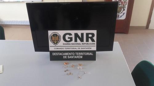 GNR Santarém - Apreensão (2)