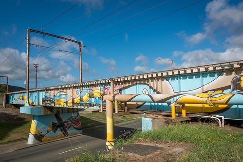 <p>49/365 This week's challenge is graffiti and street art.  Pomare Rail Bridge</p>