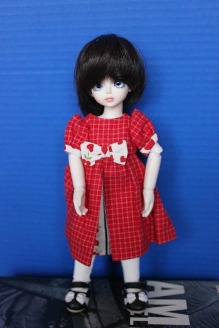Naperville Doll Show Jan 2018