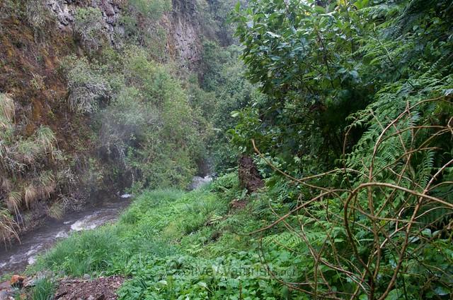 view 0001 balneario Tambo, Papallacta, Ecuador