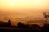 Sonnenaufgang bei Pluwig / Rheinland-Pfalz