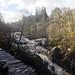 river braan at rumbling bridge