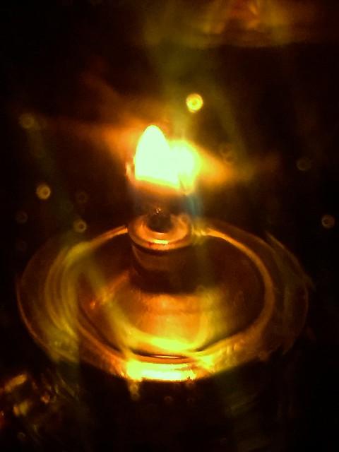 Seeking to Light  IMG_2599