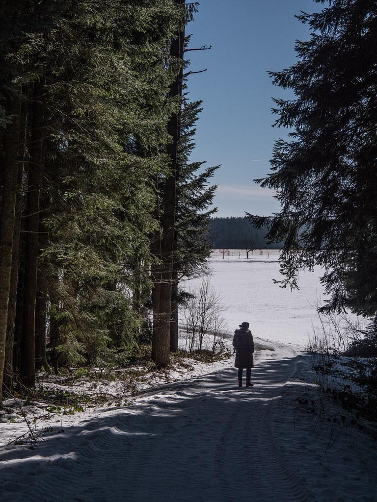 Promenade dans la neige 25784499527_4cac7d45ae_b