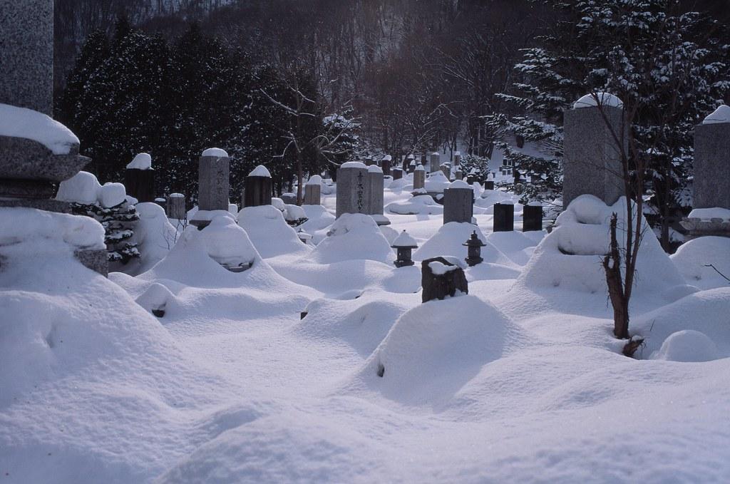 北海道神宮 Sapporo, Japan / Agfa CT Precisa / Nikon FM2 在北海道神宮前亂走逛逛,看見路旁有小小的墓園。  雪堆積得很深,即使這樣露出一點點也沒有辦法知道原本的高度如何。  每個柱子都戴上了帽子。  Nikon FM2 Nikon AI AF Nikkor 35mm F/2D Agfa CT Precisa 35mm 8704-0009 2016-02-03 Photo by Toomore