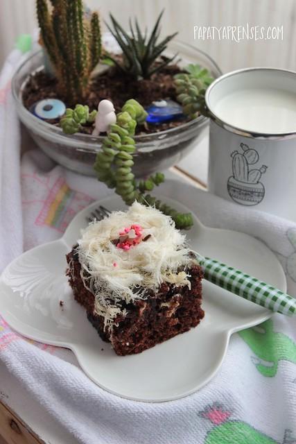 çikolatalı kek 036