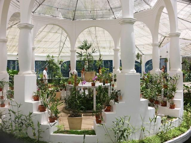 jardim botanico 6 atractii turistice rio de janeiro