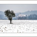 Trüber Wintertag (cloudy winter day) by alfred.hausberger