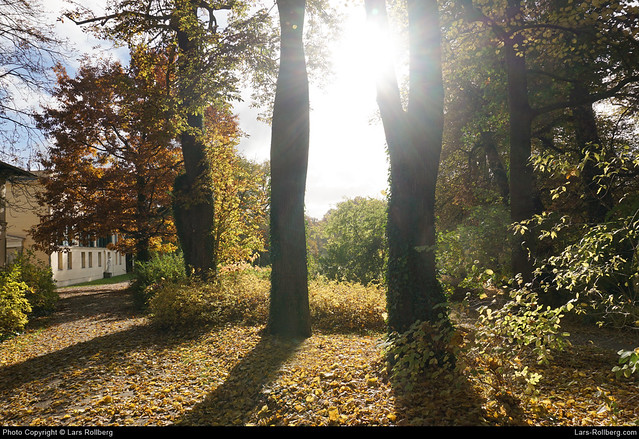 Schlosspark Glienicke, Berlin, Germany